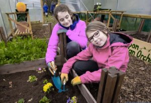 Tesco Community Grants