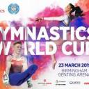 Gymnastics World Cup Icon